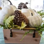 photo of white pumpkin centerpiece