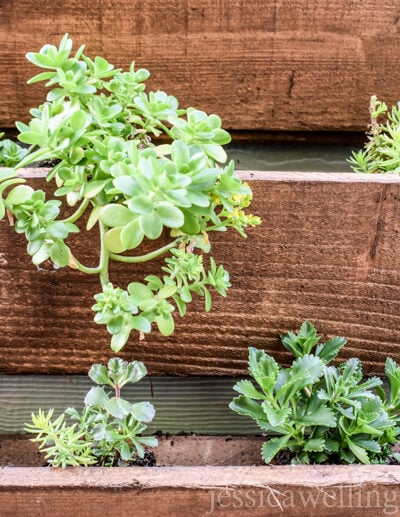 image of wood vertical garden