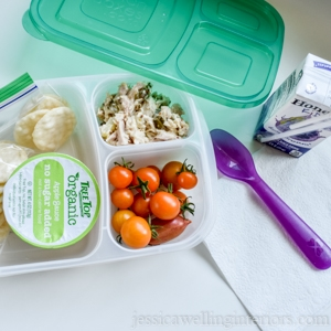 child's bento-style lunch container packed with applesauce cup, cheery tomatoes, and tuna salad