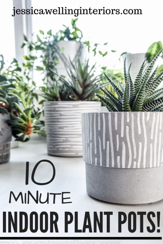 10-Minute Indoor Plant Pots: collection of inoor plants in grey pots with white line patterns