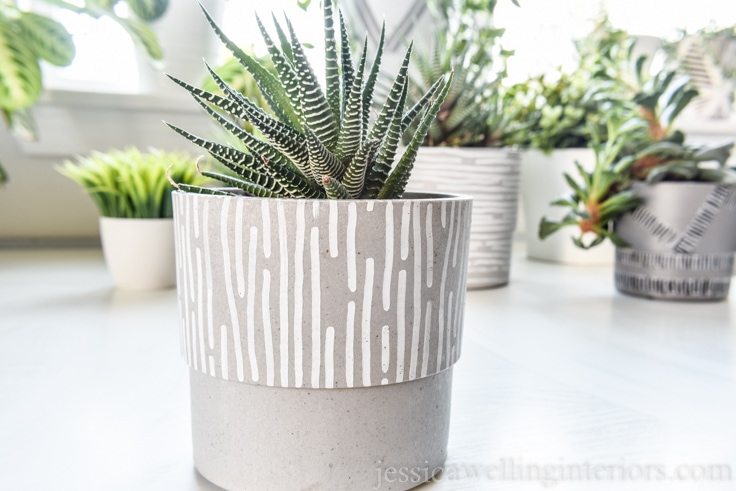finished modern indoor plant pot with white vertical line pattern with a spiky succulent planted in it