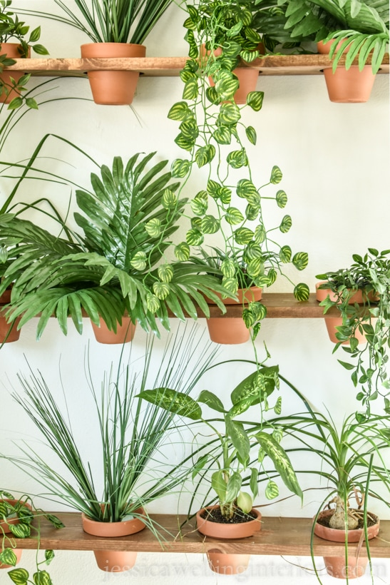close-up of indoor DIY vertical garden with indoor hanging plants and terra cotta pots