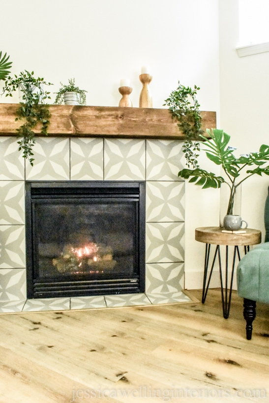 modern fireplace with several different realistic artificial plants on the mantel and an end table