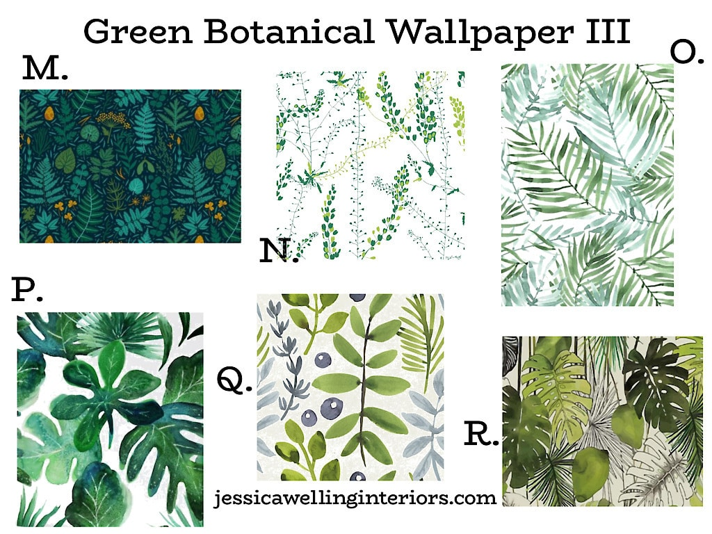 Green Botanical Wallpaper III: Collage of tropical and botanical leaf prints on peel and stick wallpaper