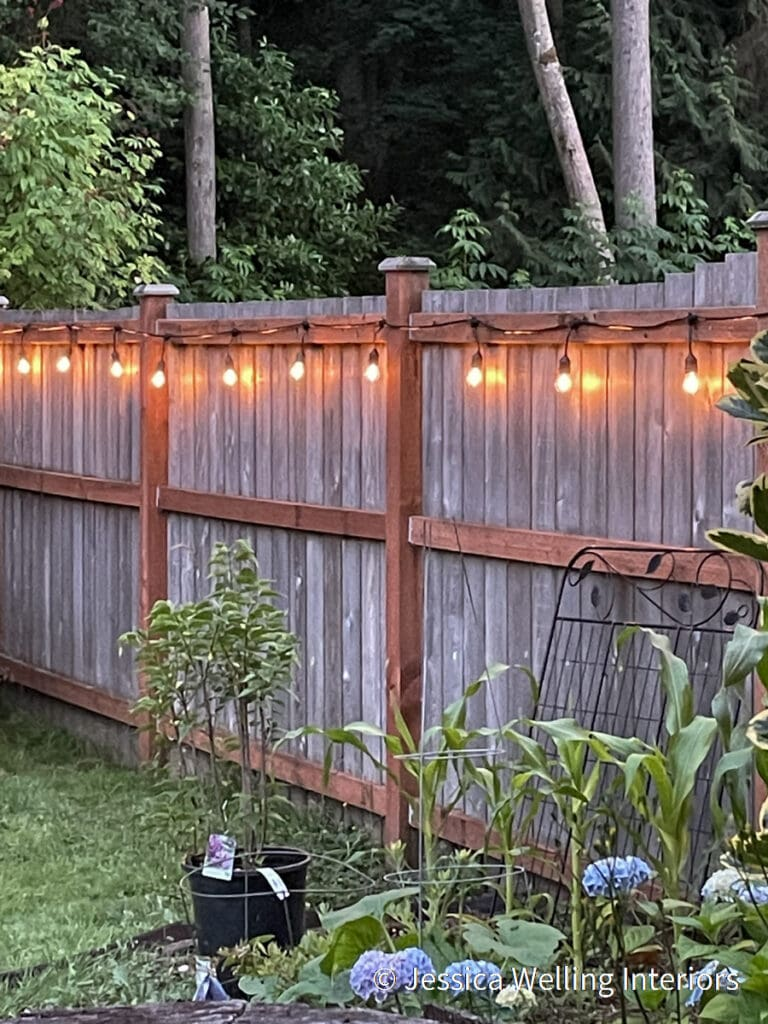 backyard lit with glowing string lights hung on a fence